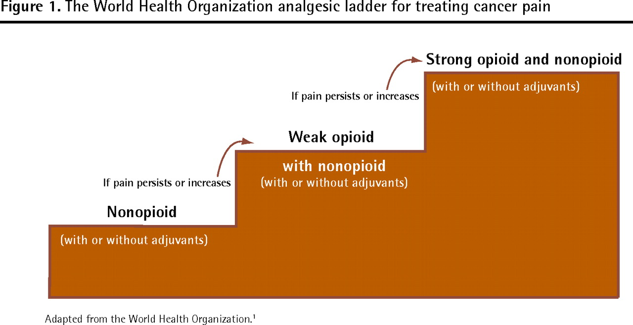 Is The Who Analgesic Ladder Still Valid