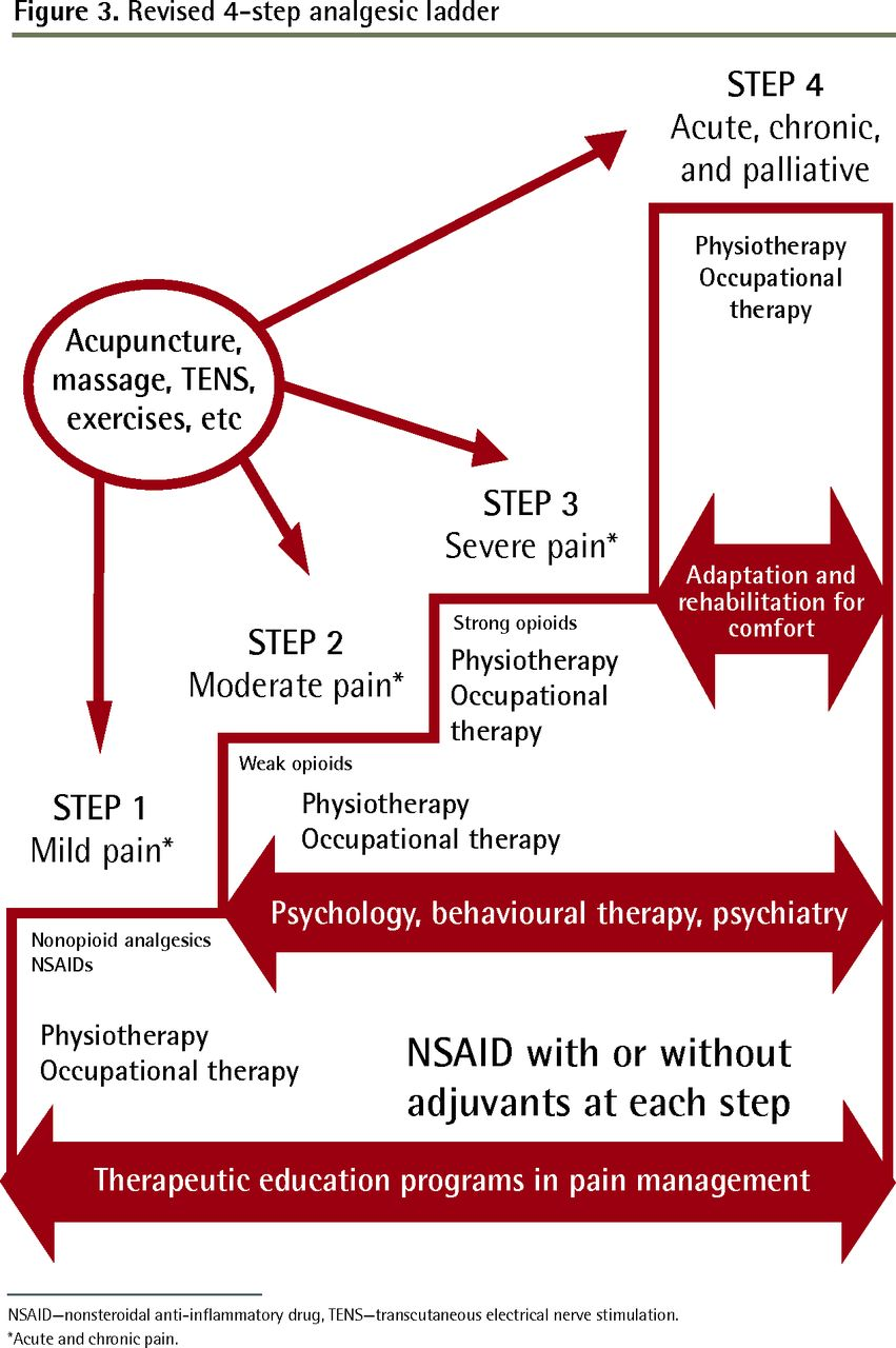 non-steroidal anti-inflammatory analgesics a review of current practice