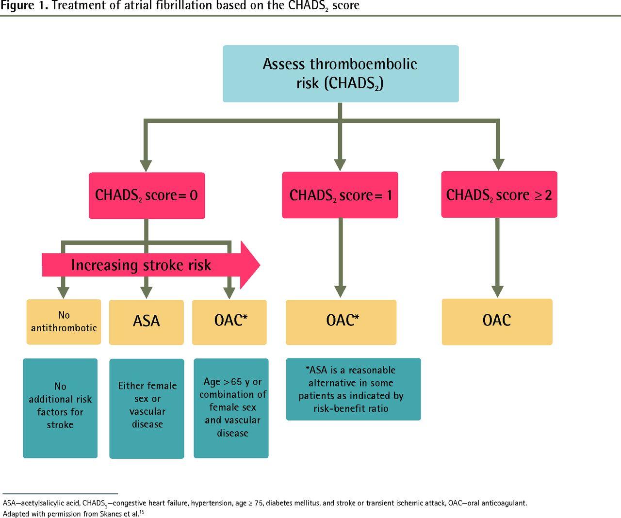 Atrial fibrillation anticoagulation care in a large urban
