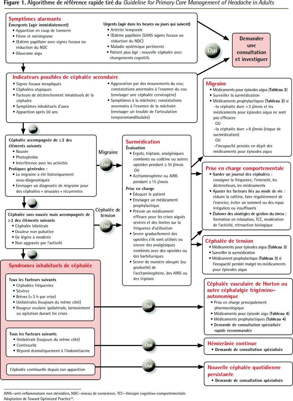 Lignes directrices sur la prise en charge en soins primaires des ...
