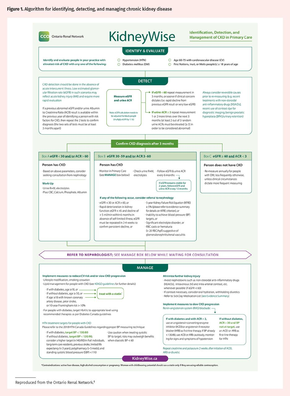 Approach To The Detection And Management Of Chronic Kidney Disease The College Of Family Physicians Of Canada